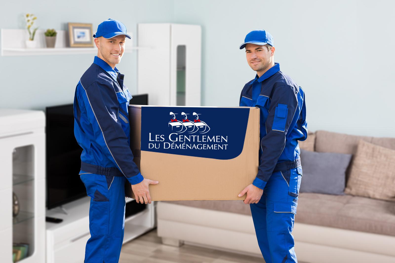 Déménageurs Côtes d'Armor pour tous vos déménagements en Bretagne et dans toute la France. Par Dolmen déménagements.